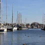 Annapolis - Harbor View Poster