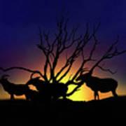 Antelope Crossing Poster