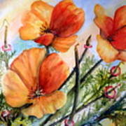 Antelope Valley Poppy Fields Poster