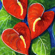 Anthurium Flowers #272 Poster