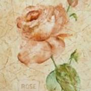 Antique Rose Poster