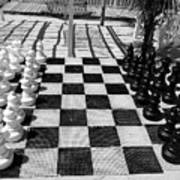 Anyone For Chess Poster