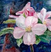 Apple Blossom - Painting Poster