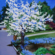 Apple Tree in Spring Poster
