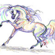 Arabian Stallion Talk Poster
