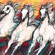 Arabian Sunset Horses Poster