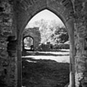 Arched Door At Ballybeg Priory In Buttevant Ireland Poster