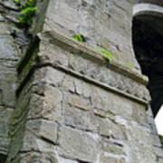 Architecural Detail At Irish Jerpoint Abbey County Kilkenny Ireland Poster