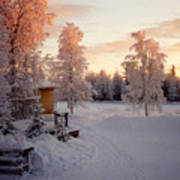 Arctic Homestead Poster