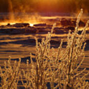 Arctic Sea Smoke Sunrise Poster
