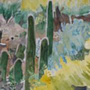 Arizona Cacti Poster