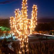 Arizona Christmas Tree Poster