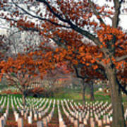 Arlington Cemetery In Fall Poster by Carolyn Marshall