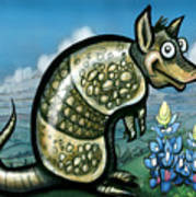 Armadillo N Bluebonnets Poster
