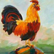 Aroostrocrat Poster