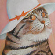 Arrogant Cat Poster