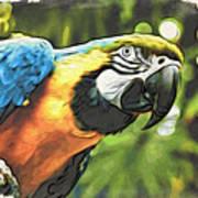 Art In Moku Hanga Style Poster
