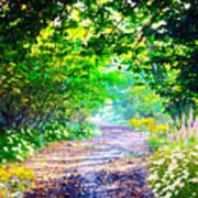 Art Rendered Country Pathway Poster