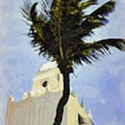 Aruba Palm Poster
