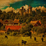 Arundel Castle With Cows Poster