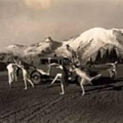 Asahel Curtis, 1874-1941, Dancing Girls At Sunrise Poster