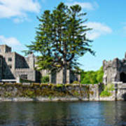 Ashford Castle And Cong River Poster