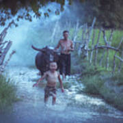Asian Boy Playing Water With Dad And Buffalo Poster