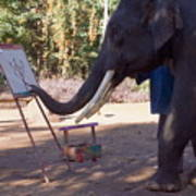 Asian Elephant Painting Picture Poster
