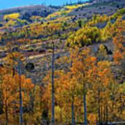 Aspen Cascades In The Sierra Poster