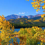 Aspen On Pikes Peak And Crystal Reservoir Poster