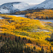 Aspens And Mountains In The Morning Light Poster