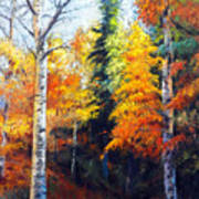 Aspens In Fall. Poster