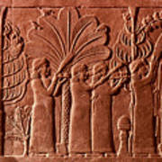 Assyrian Queen, 645 B.c Poster