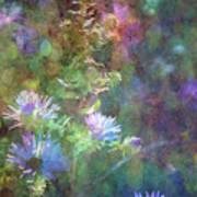 Aster 5077 Idp_2 Poster