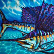 Atlantic Sailfish Poster