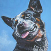 Australian Cattle Dog 2 Poster by Lee Ann Shepard
