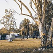 Australian Rural Countryside Landscape Poster