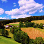 Austrian Rural Forest Vista Poster