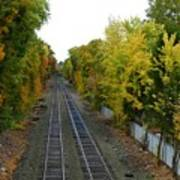 Autumn Along The Tracks Poster