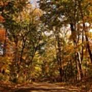 Autumn At Audubon Poster