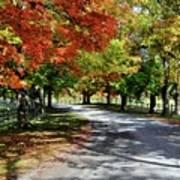 Autumn At Oatlands Lane Poster