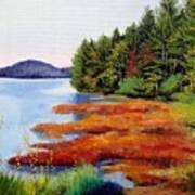 Autumn Bay Marsh Poster