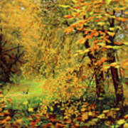 Autumn Bliss Of Color Poster