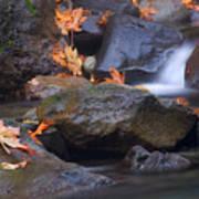 Autumn Cascades Poster
