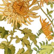 Autumn Chrysanthemums I Poster