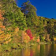 Autumn Color Trees Along Beauty Lake Poster