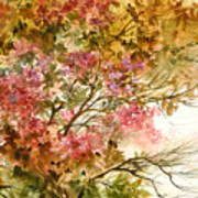 Autumn Colors And Twigs Poster
