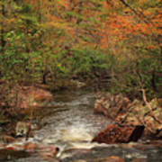 Autumn Colors On Pickle Creek 1 Poster