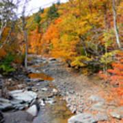Autumn Creek 3 Poster