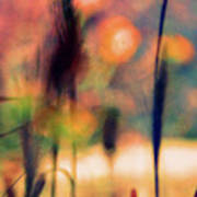 Autumn Dreams Abstract Poster